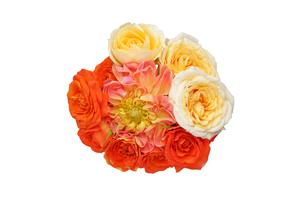 ダリアと薔薇の花束の写真素材 [FYI01230447]