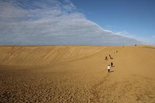 鳥取砂丘の写真素材 [FYI01230609]