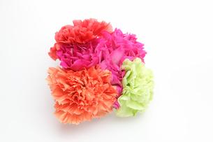 カーネーションの花束の写真素材 [FYI01230637]