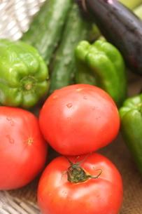 夏野菜の写真素材 [FYI01230803]
