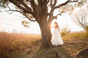 夕焼けとウエディングドレスの写真素材 [FYI01230881]