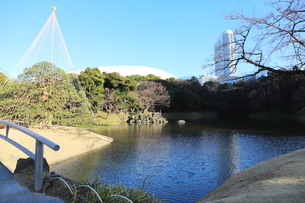 東京ドームに隣接する「小石川後楽園」という日本庭園の写真素材 [FYI01230967]
