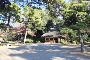 東京ドームに隣接する小石川後楽園という日本庭園の写真素材 [FYI01230971]