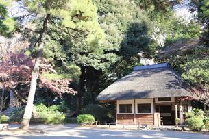 東京ドームに隣接する小石川後楽園という日本庭園の写真素材 [FYI01230972]