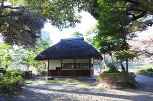 東京ドームに隣接する小石川後楽園という日本庭園の写真素材 [FYI01230976]