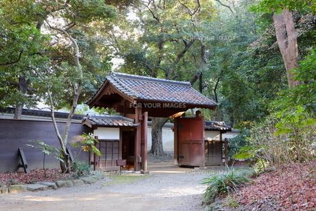東京ドームに隣接する小石川後楽園という日本庭園の写真素材 [FYI01230978]