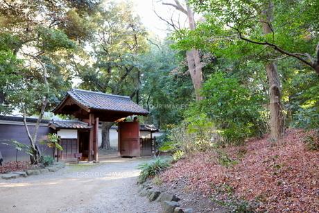 東京ドームに隣接する小石川後楽園という日本庭園の写真素材 [FYI01230979]