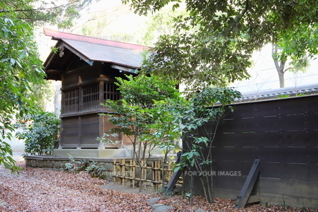 東京ドームに隣接する小石川後楽園という日本庭園の写真素材 [FYI01230980]