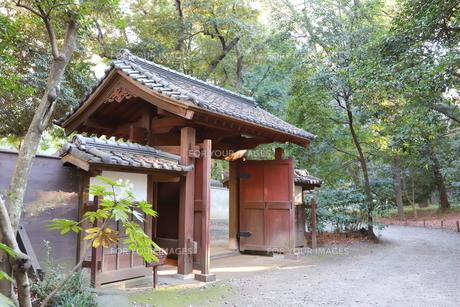東京ドームに隣接する小石川後楽園という日本庭園の写真素材 [FYI01230981]