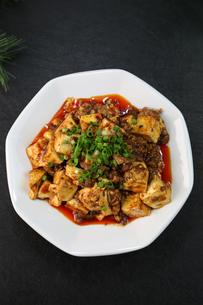 麻婆豆腐の写真素材 [FYI01231149]