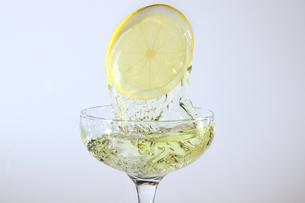 レモンと水飛沫の写真素材 [FYI01231164]
