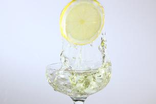 レモンと水飛沫の写真素材 [FYI01231166]