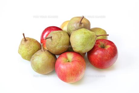 洋梨と林檎の写真素材 [FYI01231173]