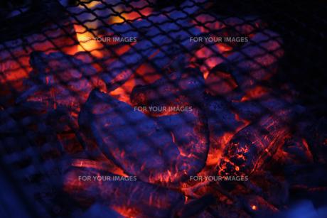 炭火の写真素材 [FYI01231313]