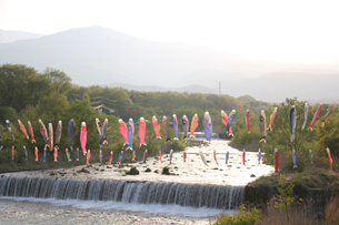 遠刈田温泉の鯉のぼりの写真素材 [FYI01231315]