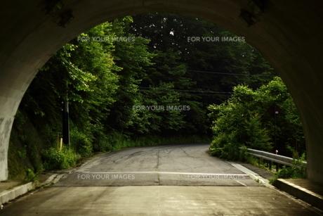トンネル出口の写真素材 [FYI01231864]