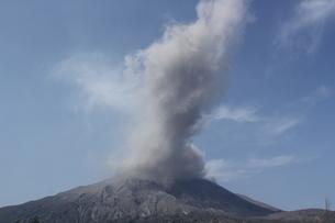 桜島の噴火の写真素材 [FYI01231879]