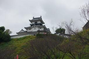 掛川城の写真素材 [FYI01231889]