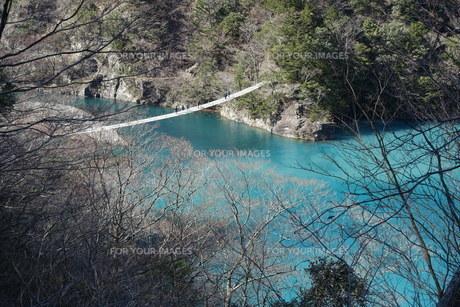 夢の吊橋の写真素材 [FYI01231890]
