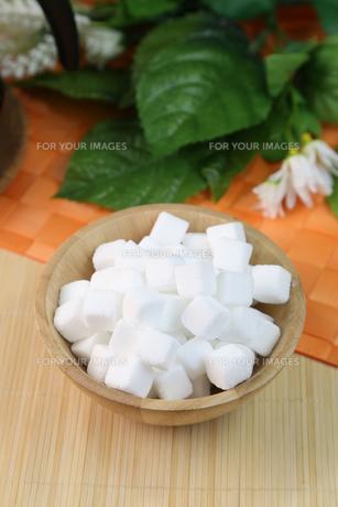 角砂糖の写真素材 [FYI01231901]