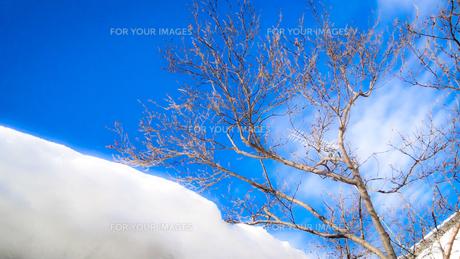 青空と積もった雪の写真素材 [FYI01231912]