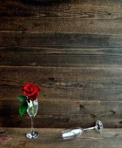 シャンパングラスにいけた一輪の赤い薔薇の写真素材 [FYI01232025]