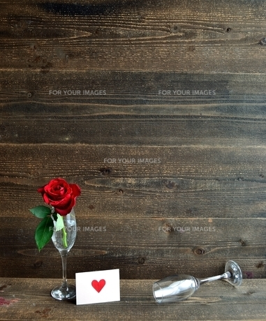 シャンパングラスにいけた一輪の赤い薔薇とメッセージカードの写真素材 [FYI01232026]