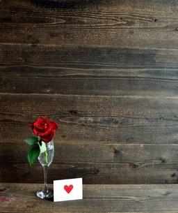 シャンパングラスにいけた一輪の赤い薔薇とメッセージカードの写真素材 [FYI01232027]