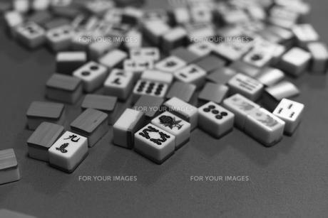 麻雀の写真素材 [FYI01232032]