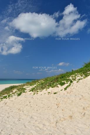 宮古島/前浜の写真素材 [FYI01232071]