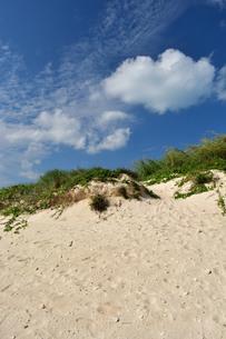 宮古島/前浜の写真素材 [FYI01232072]