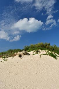 宮古島/前浜の写真素材 [FYI01232073]