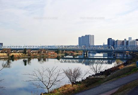 川崎市から見た多摩川と六郷川橋梁の写真素材 [FYI01232101]