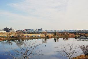 川崎市から見た多摩川と六郷川橋梁の写真素材 [FYI01232102]