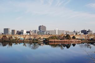 川崎市から見た多摩川と対岸の風景の写真素材 [FYI01232103]