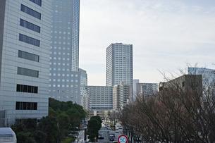 川崎の風景の写真素材 [FYI01232105]