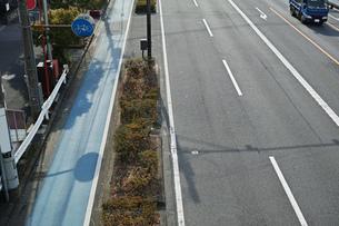 自転車専用通行帯と車道の写真素材 [FYI01232107]