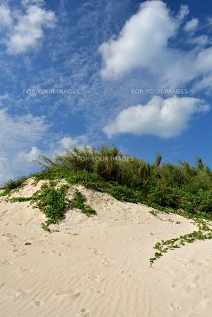 宮古島/前浜の写真素材 [FYI01232181]