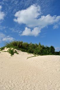 宮古島/前浜の写真素材 [FYI01232184]