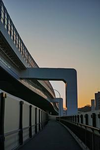夕方の岸谷生麦線の歩道の写真素材 [FYI01232363]