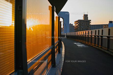 夕方の岸谷生麦線の歩道の写真素材 [FYI01232382]
