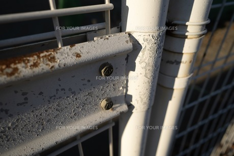 サビとネジと。。そしてフェンスの写真素材 [FYI01232514]