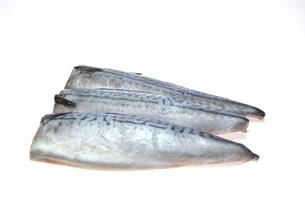 塩サバの写真素材 [FYI01232580]