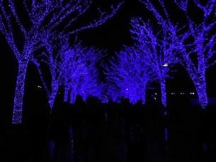 SHIBUYA青の洞窟の写真素材 [FYI01232706]