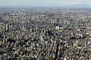 空から見た東京の住宅街の写真素材 [FYI01232838]