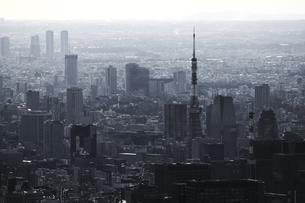 グレー一色のモノクロシティ東京の写真素材 [FYI01232839]