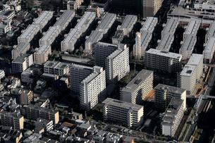 空から見た東京の住宅街の写真素材 [FYI01232841]