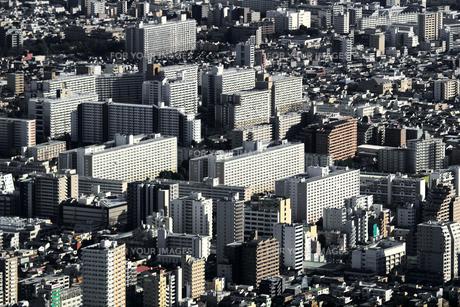 空から見た東京の住宅街の写真素材 [FYI01232843]