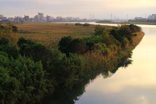 傾いた日差しの中で輝く穏やかで静かな川の眺めの写真素材 [FYI01232871]