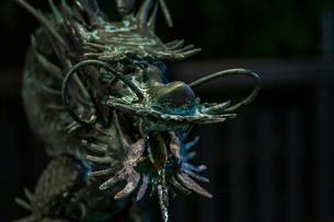 龍神の写真素材 [FYI01232919]